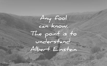 albert einstein quotes any fool can know the point understand wisdom