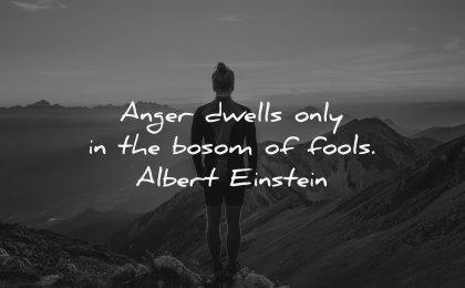 anger quotes dwells bosom fools albert einstein wisdom man nature mountains