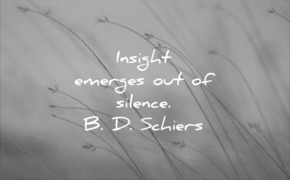 calm quotes insight emerges out silence bd schiers wisdom nature
