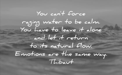 calm quotes you cant force raging water have leave alone return its natural flow emotions same way thibaut wisdom