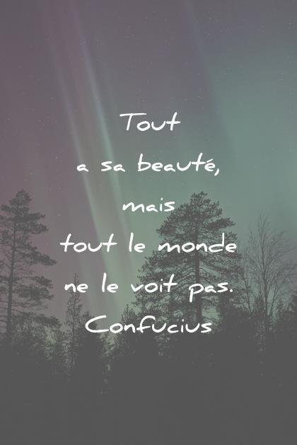 citation sur la vie tout a sa beaute mais tout le monde ne le voit pas confucius wisdom quotes