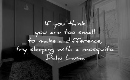 dalai lama quotes tenzin gyatso think small make difference sleeping mosquito wisdom bed