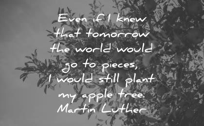 deep quotes even knew that tomorrow world would pieces would still plant apple tree martin luther wisdom nature