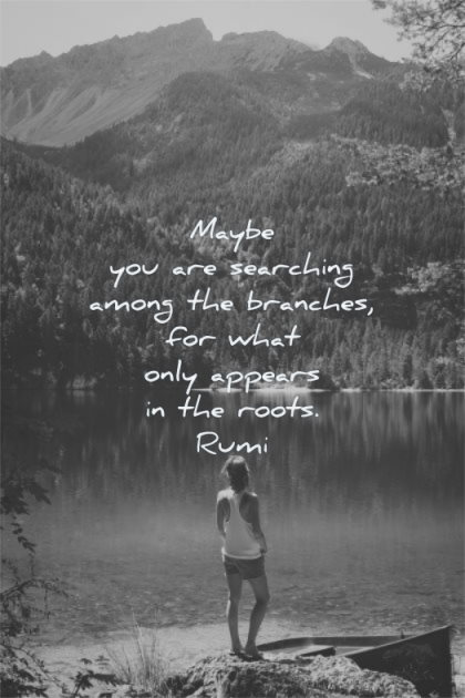 deep quotes maybe searching amoung branches what only appears roots rumi wisdom woman water lake nature solitude