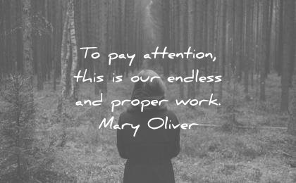 deep quotes pay proper attention our endless proper work mary oliver wisdom