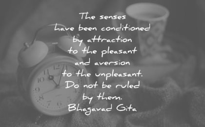 discipline quotes senses have been conditioned attraction pleasant aversion unpleasant not ruled them bhagavad gita wisdom