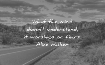 fear quotes what mind doesnt understand worships fears alice walkers wisdom road nature