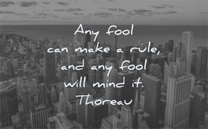 freedom quotes any fool can make rule will mind henry david thoreau wisdom city