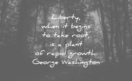 freedom quotes liberty when begins take root plant rapid growth george washington wisdom