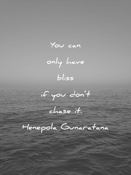 happiness quotes you can only have bliss dont chase henepola gunaratana wisdom