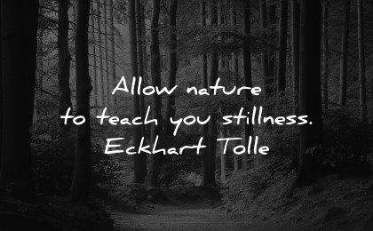 healing quotes allow nature teach stillness eckhart tolle wisdom forest path