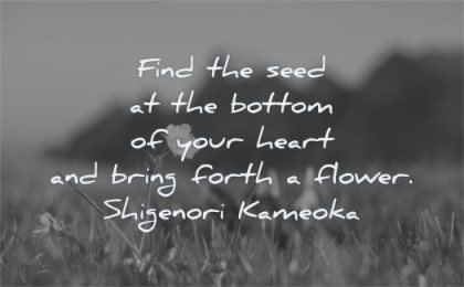 hope quotes find seed bottom your heart bring forth flower shigenor kameoka wisdom nature field