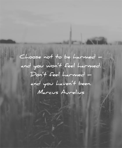 hurt quotes choose not harmed you wont feel dont havent been marcus aurelius wisdom
