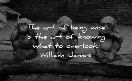 knowledge quotes art being wise knowing what overlook william james wisdom monkeys statues
