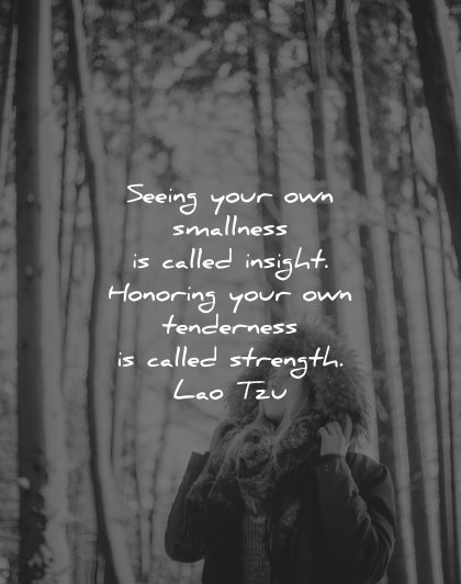 lao tzu quotes seeing your own smallness called insight honoring tenderness strength wisdom nature woman