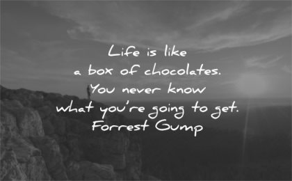 life quotes like box chocolates you never know what going get forrest gump wisdom sunset man mountains