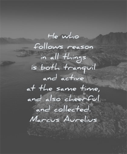 marcus aurelius quotes who follows reason all things both tranquil active same time wisdom nature water islands