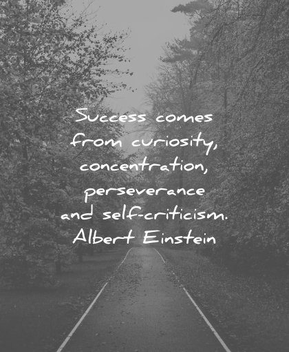 perseverance quotes success comes from curiosity concentration self criticism albert einstein wisdom