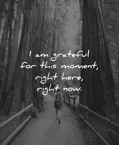 positive affirmations grateful this moment right here now wisdom nature trees path