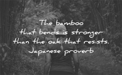quotes about strength bamboo bends stronger oak resists japanese proverb wisdom woman forest walk