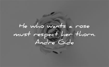 respect quotes wants rose must thorn andre gide wisdom