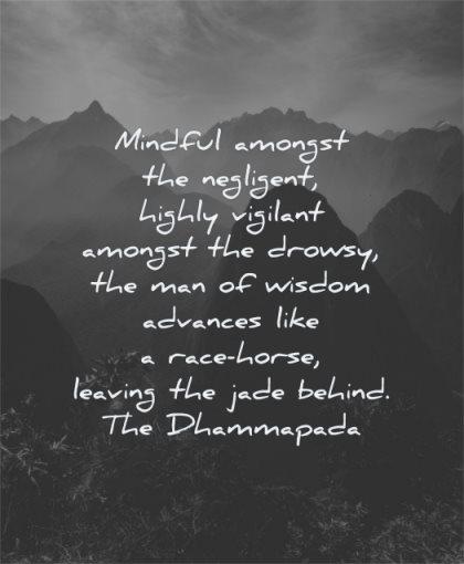 responsibility quotes mindful amongst negligent highly vigilant drowsy man advances dhammapada wisdom nature mountains