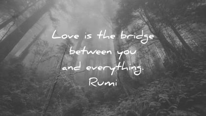 rumi quotes love is the bridge between you and everything wisdom quotes