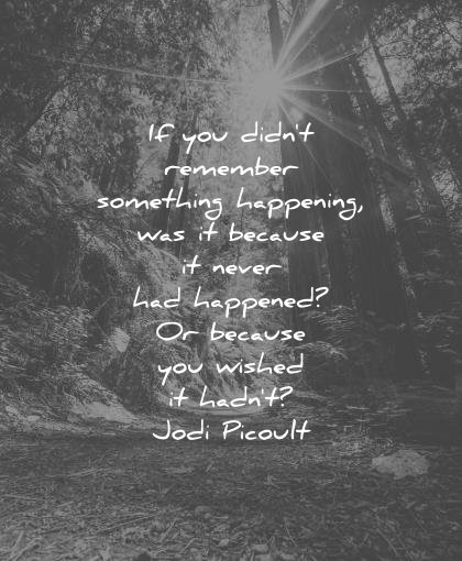sad quotes you didnt remember something was it because never had happened wished hadnt jodi picoult wisdom