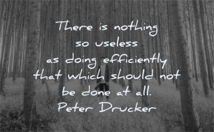 success quotes nothing useless doing efficiently which should not done peter drucker wisdom man forest