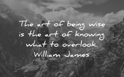 art being wise knowing what overlook william james wisdom man nature mountains