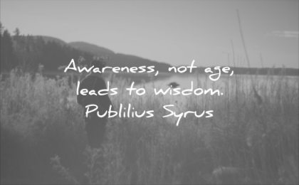 wise quotes awareness not age leads wisdom publilius syrus man water fields sun sunset nature